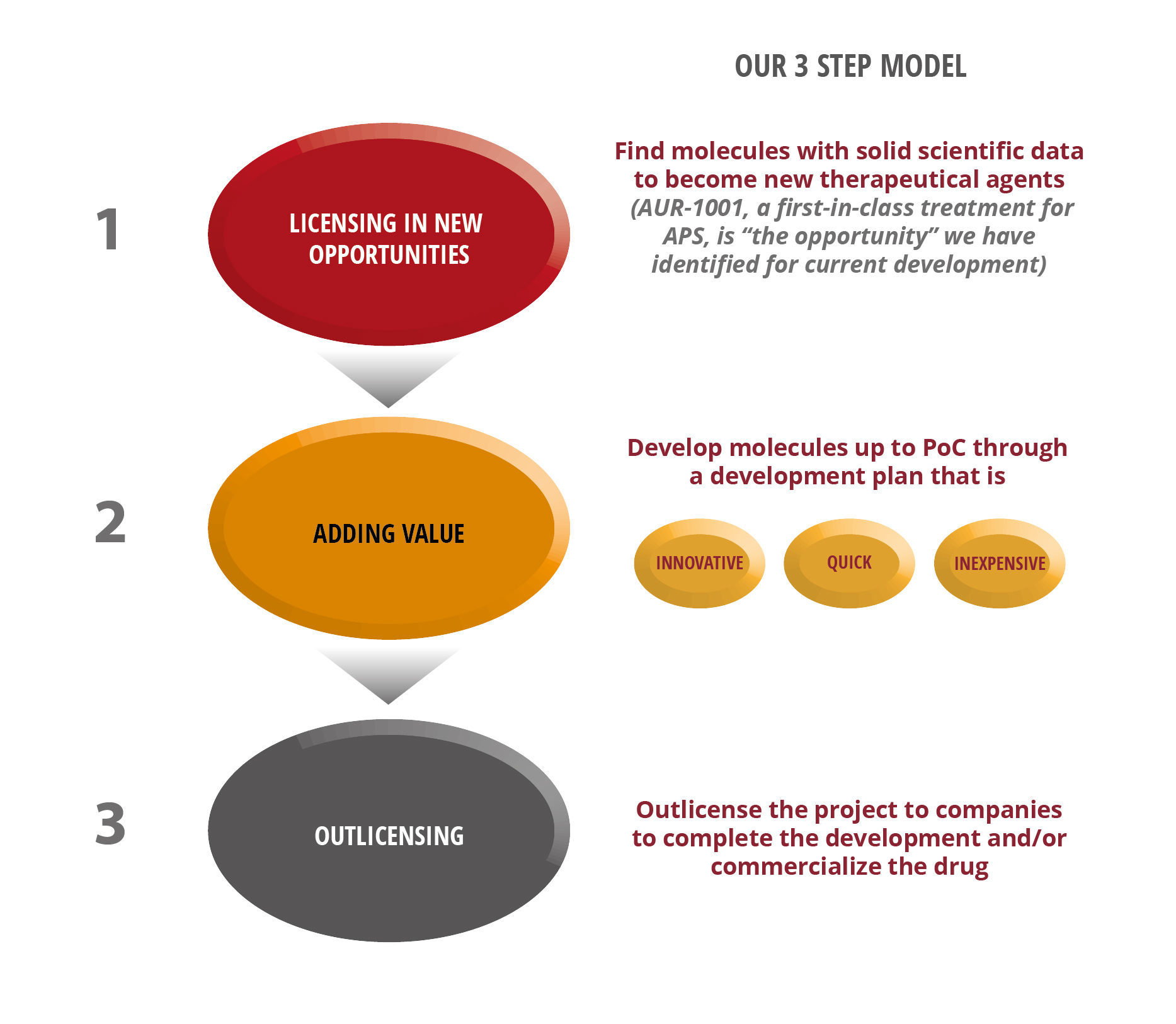 aurabiopharm_Drug development model_6